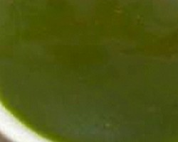 Bottle Gourd Soup Recipe